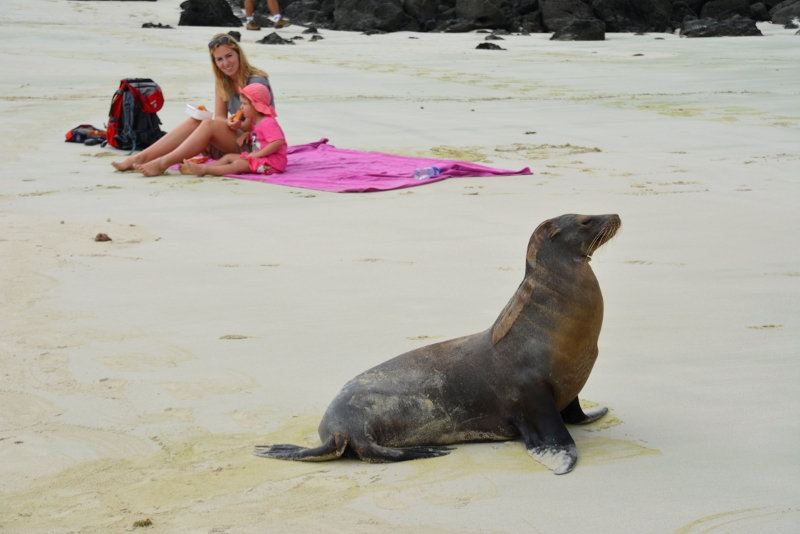 Travel with kids to Galapagos