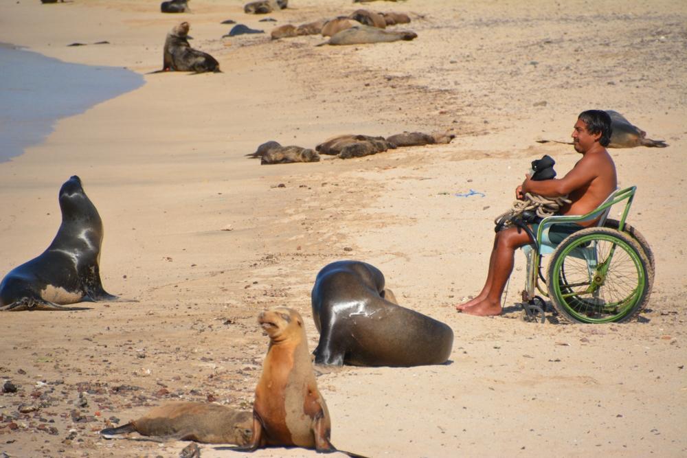 innovative wheelchair