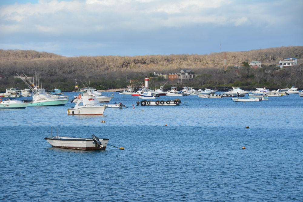 Harbour of San Cristobal