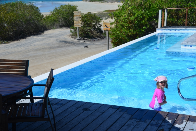 The Iguana Crossing Hotel Galapagos -travel with kids to Galapagos