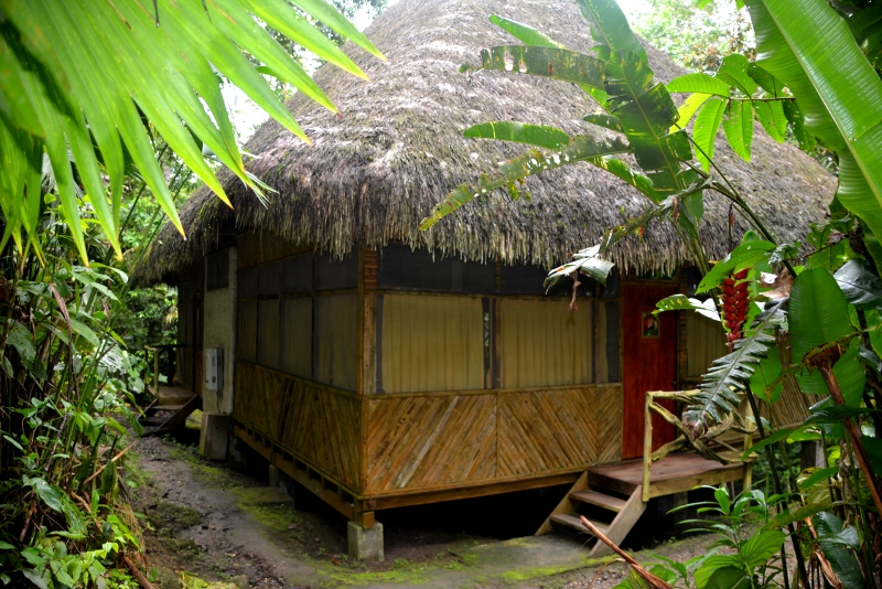 The Liana Djungle Lodge